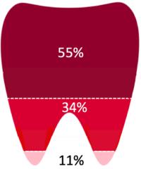 Remboursement dentaires CPAM en France