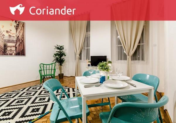 portfolio_Coriander